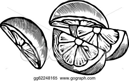 Related Keywords Suggestions Lemon Drawing Long Tail Keywords ...