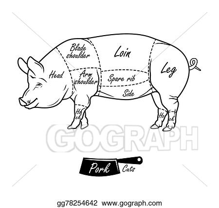 American Cuts Of Pork Vintage Typographic Hand Drawn Gg78254642 on cuts of meat clip art
