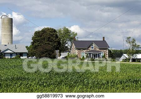 American farm house organic with corn field