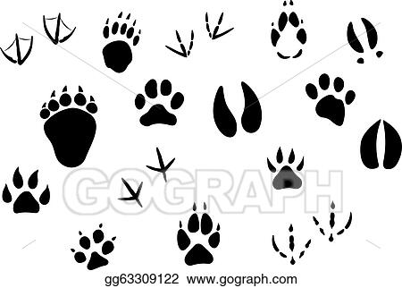 Animal tracks 3 as well Stock Vector Set Of Lovely Animal Lovers Couples Silhouette Deers Owls Pigeons Elephants Moose Roes Hares in addition Animals And Their Tracks 7457182 likewise Animal Footprints And Tracks Gg63309122 as well Animal Footprints Silhouette 35519716. on deer tracks clip art