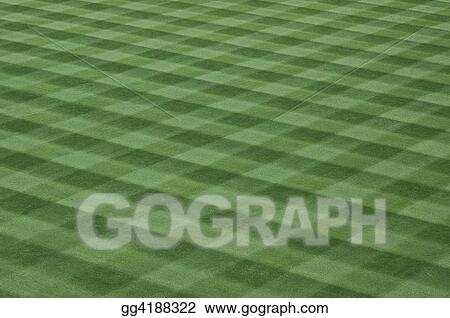 Baseball Field Grass Turf