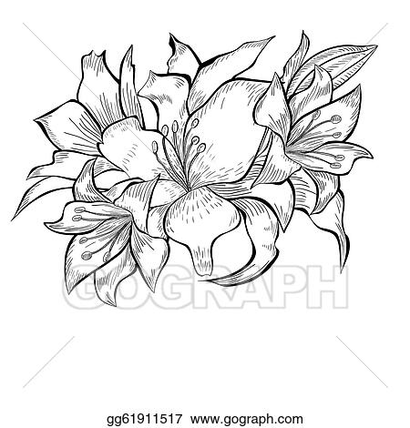 Drawings Of Flowers In Black And White Black and white illustration