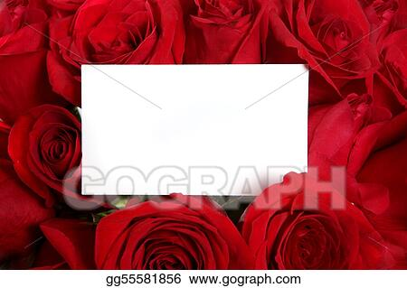 Blank Message Card Surrounded by Red Roses Perfect for Valentine\'s Day or an Anniversary