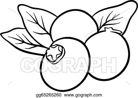 Vector Art - Blueberry fruits for coloring book. Clipart Drawing ...
