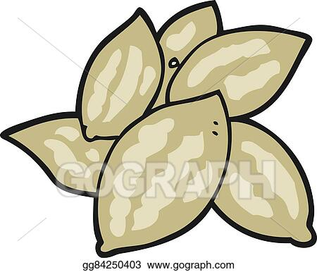 Almond vector free download