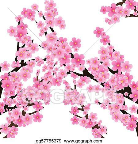 Vector Illustration - Cherry blossom, flowers of sakura, tree ...