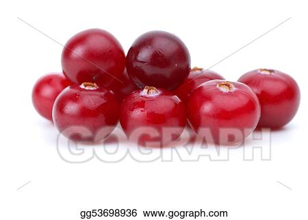 Close-up shot of few cranberries