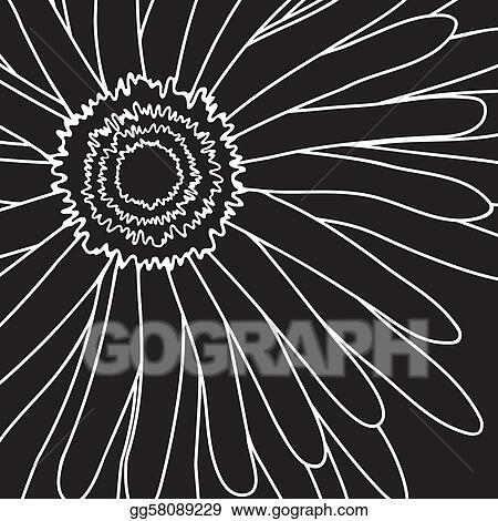 drawing gerbera
