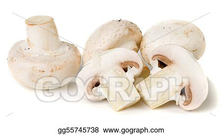 Edible white button mushroom
