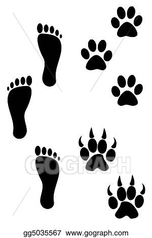 Foot and paw prints