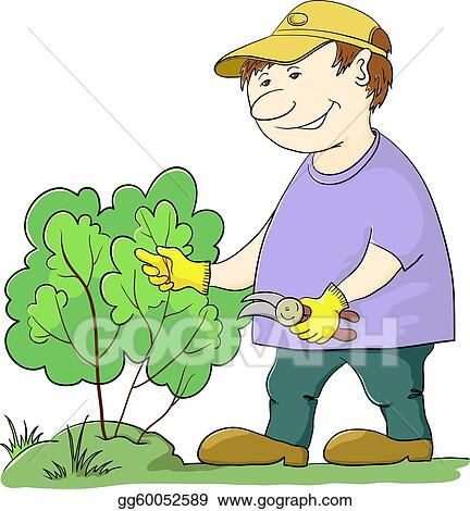 Gardener cuts a bush