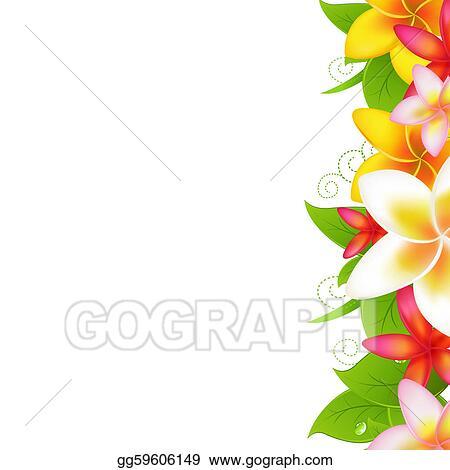 Plumeria Flower Border Clip Art