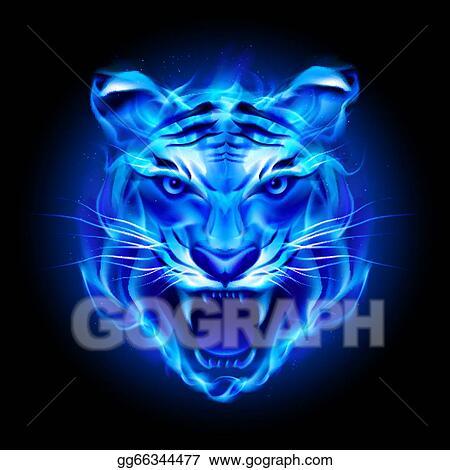 Head of fire tiger