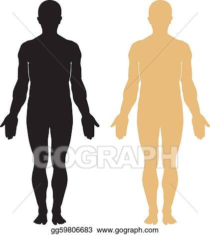 Human Body Clip Art - Royalty Free - GoGraph