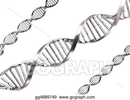 Isolated DNA Strands