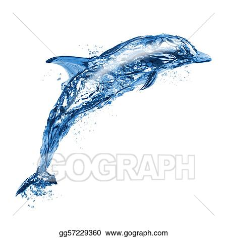 Jumping water dolphin