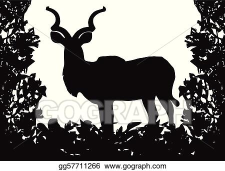 Kudu (Koedoe) in Isolated Bush Frame Vector