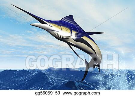MARLIN jUMP