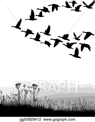 Stock illustration black and white illustration of the flying geese