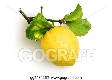 natural lemon