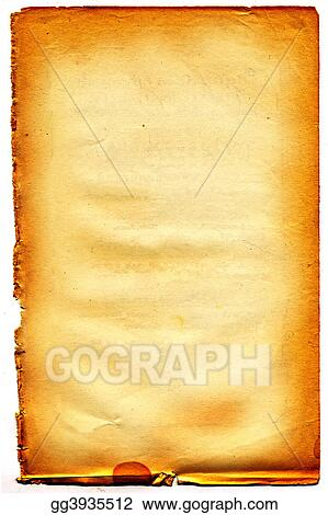 Old textured paper with tattered edge. On white. #21