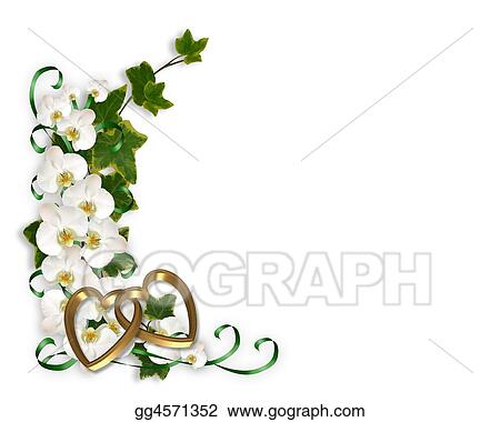 Clipart - Orchids and ivy border. Stock Illustration gg4571352 ...