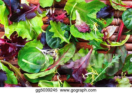 Organic Spring Mix Lettuce