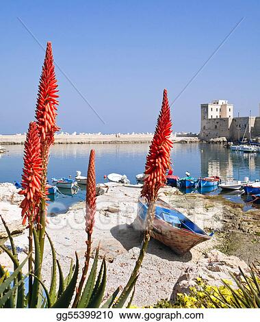 Panoramic view of Giovinazzo seaport.