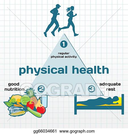 vector illustration   physical health  graphic eps