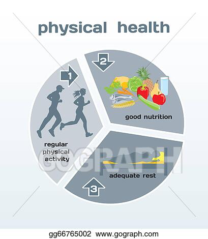 Vector Illustration - Physical health infographic. EPS ...