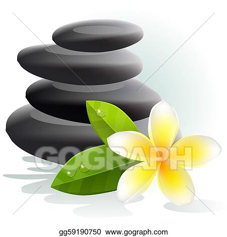 Plumeria Flower Line Drawing Plumeria flower and spa stones