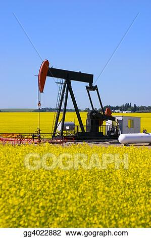 Pump Jack in Canola