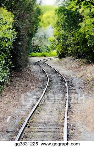 Rails through Woods