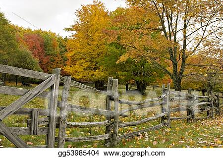 Split rail fence in Fall
