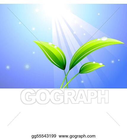 Sunbeam on a leaf background