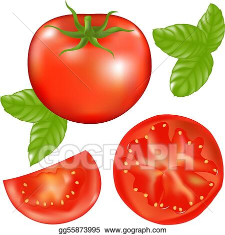 Tomato With Slices Of Tomato And Basil Leaves