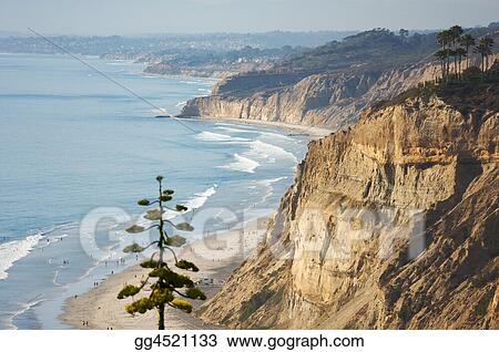 Torrey Pines Beach and Coastline