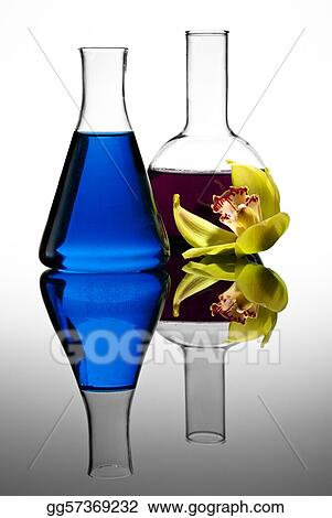 Two colorful flasks with flower