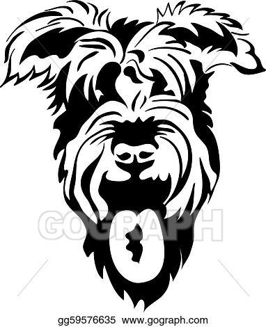 Vector sketch of purebred dogs Schnauzer