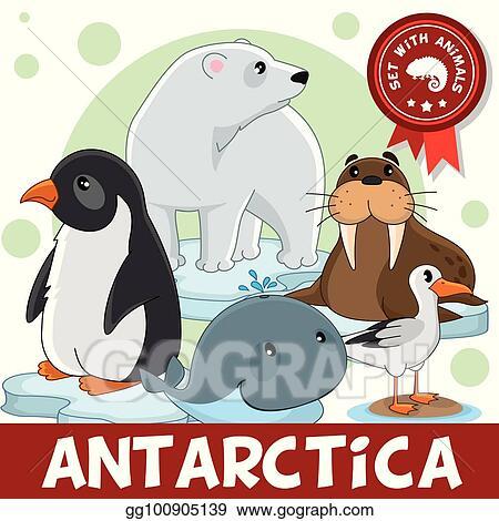 Vector Art - 3 part. animals of antarctica. EPS clipart ...