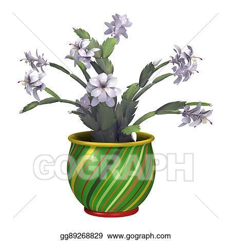 Christmas Cactus Clipart.Stock Illustration 3d Rendering Christmas Cactus Or