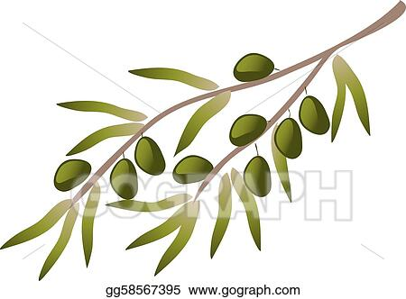 Olive Trees Clip Art Royalty Free Gograph