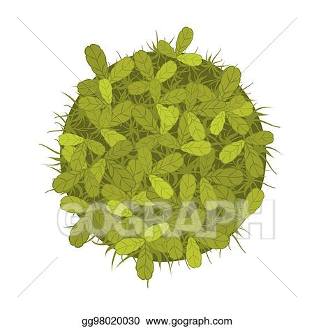 Vector Art - A green plant or tree, top view  vector illustration