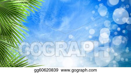 Abstract Spring Backgrounds With Beautiful Bokeh And Palm Leaves