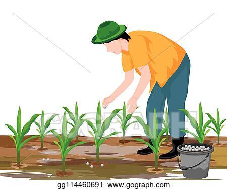 Farmer clipart agriculturist, Farmer agriculturist Transparent FREE for  download on WebStockReview 2020