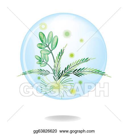 Vector Art An Eco Green Friendly Environmental