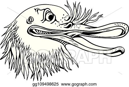Vector Clipart Angry Kiwi Bird Head Cartoon Black And White Vector Illustration Gg109498625 Gograph