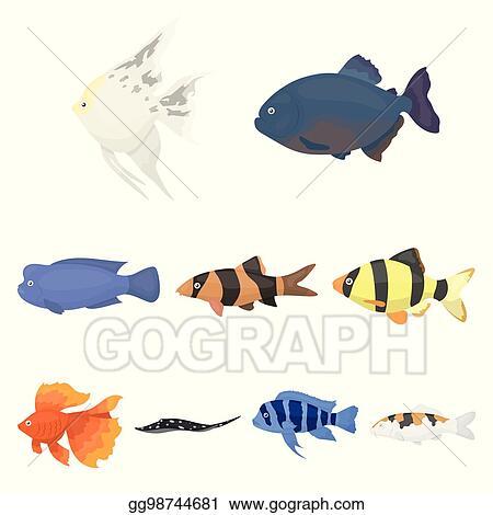Vector Stock Aquarium Fish Set Icons In Cartoon Style Big