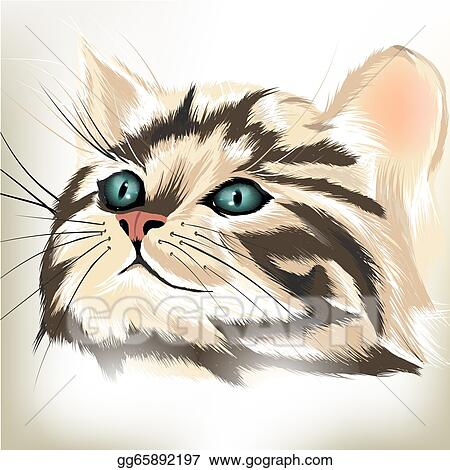 Drawings Art Vector Portrait Of Cute Striped Cat With Big Blue