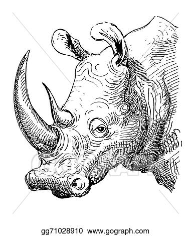 Vector Illustration - Artwork rhinoceros, sketch black and